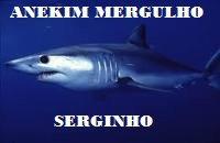 Anekim