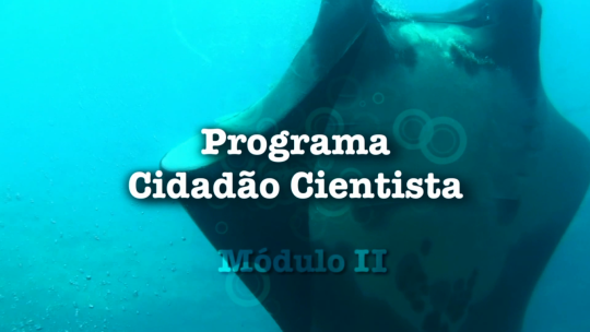 Videoaula - Programa Cidadão Cientista Modulo II